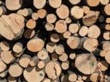 Peč na kurilno olje ali drva?